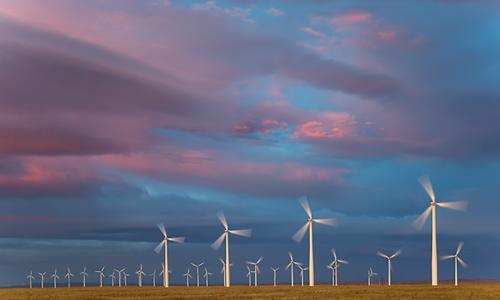 ветряная ферма в поле