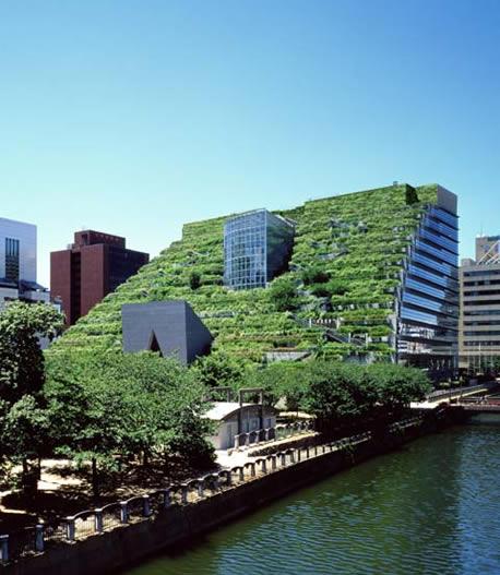 Зеленые крыши в Японии