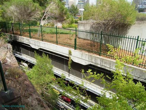 Зеленая крыша в Сиднее