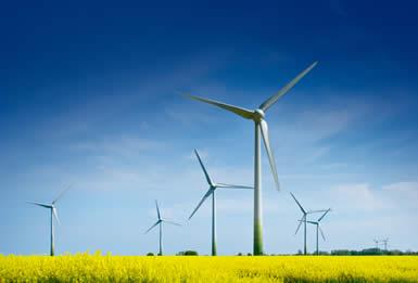 ветряки в поле