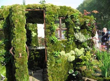 Зеленый домик