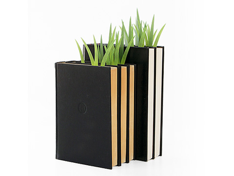 Книжная трава
