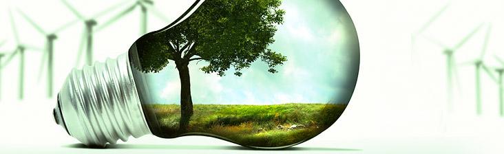Лампочка и экология