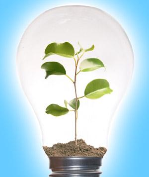 Лампочка с деревом