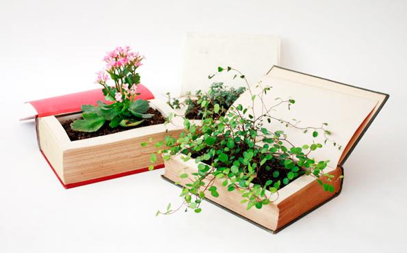 Цветы в книгах