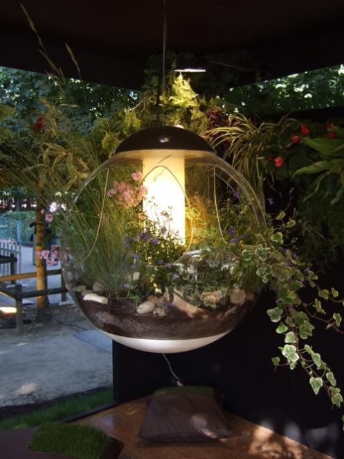 Комнатные растения в дизайне