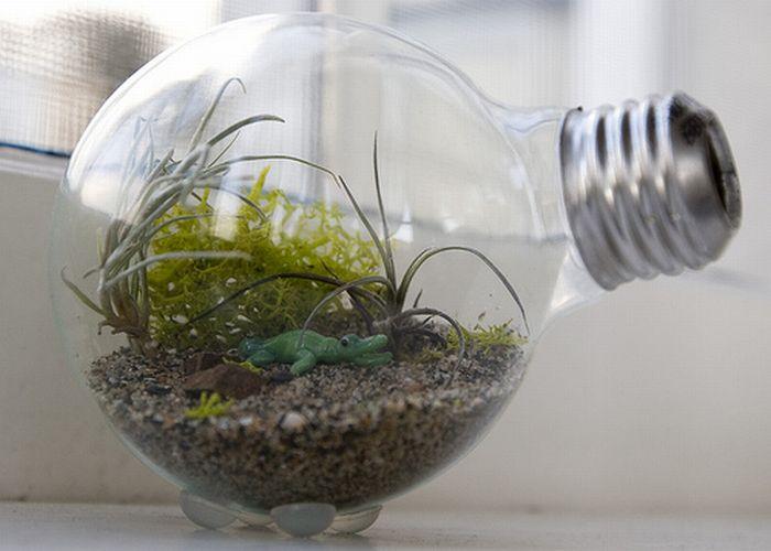 Сад в лампочке