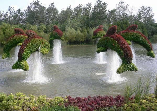 Сад японский картинка