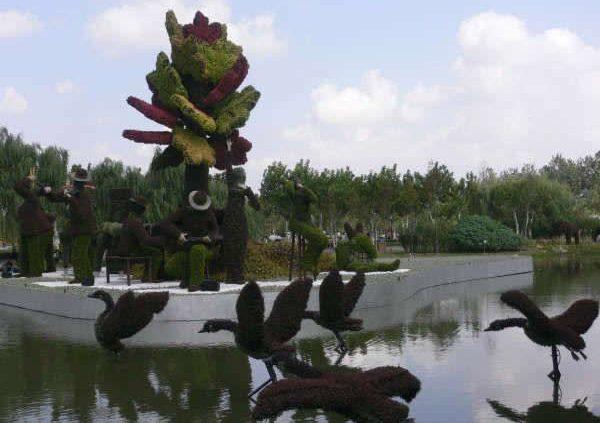 Сад японский фото