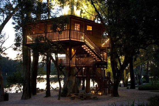 дом на дереве-5
