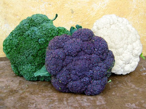Цветная капуста польза и вред полезные свойства и